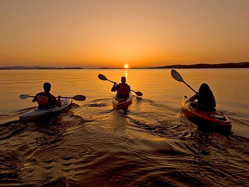 Night Kayaking Tours from Limerick - Things to see in Limerick